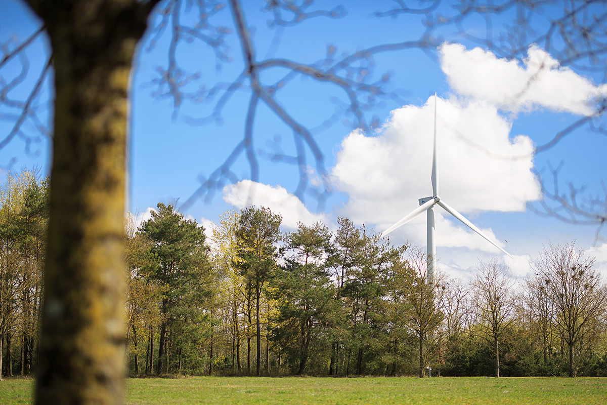 Trees-foreground-lonely-turbine-in-background   WindEurope
